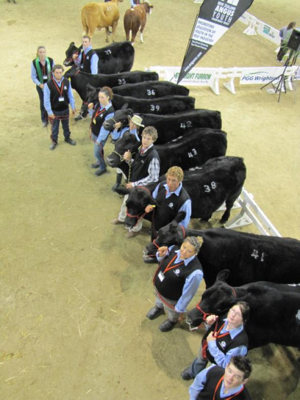 Ranui Angus team up with Ag Challenge for Future Beef